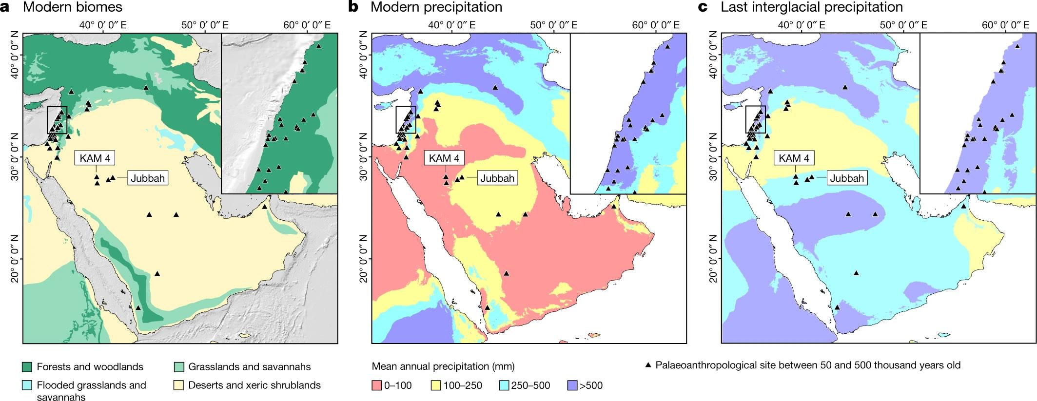 过去40万年里智人及其近亲多次在阿拉伯内陆迁徙