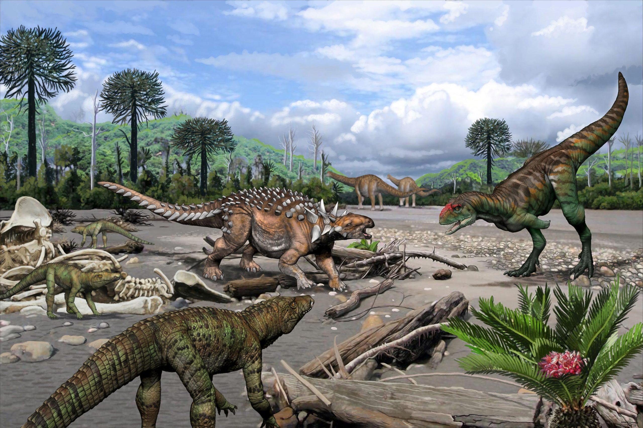 化石研究显示阿根廷的白垩纪爬行动物多样性令人惊讶