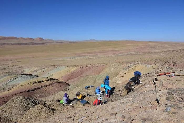 古生物科考队在青藏高原中部开展野外化石发掘(供图:苏涛)