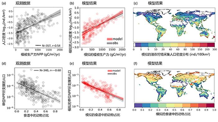 生态系统-人类耦合模型揭示出:食谱中肉食占比(由动植物资源的季节性相对丰度决定)的增加显著降低单位NPP所能支撑的人口密度