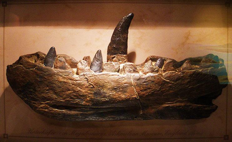 斑龙可怕的牙齿下颚模型及水晶宫的斑龙雕塑