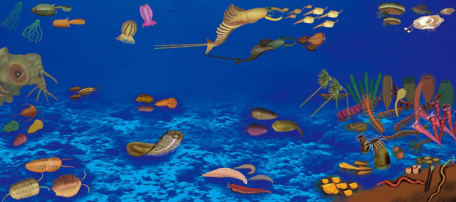 澄江动物群生态复原图