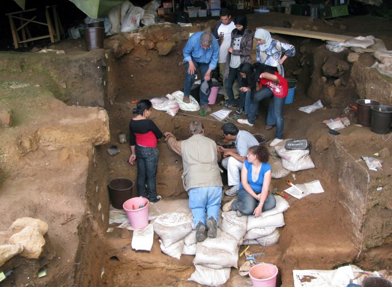 12万年前生活在现今摩洛哥的早期人类使用骨质工具制作衣服