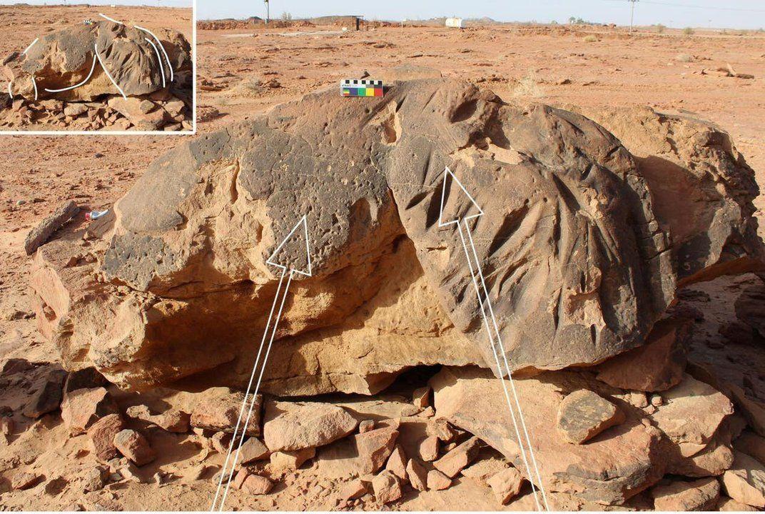 沙特阿拉伯北部发现的真人大小骆驼雕塑可以追溯到7000-8000年前