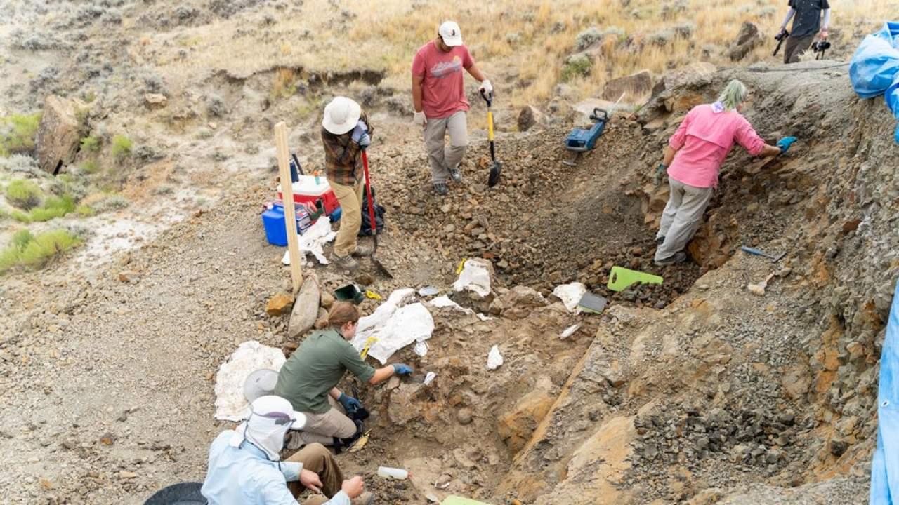 美国蒙大拿州的地层化石新发现几乎完整记录恐龙时代末期的场景