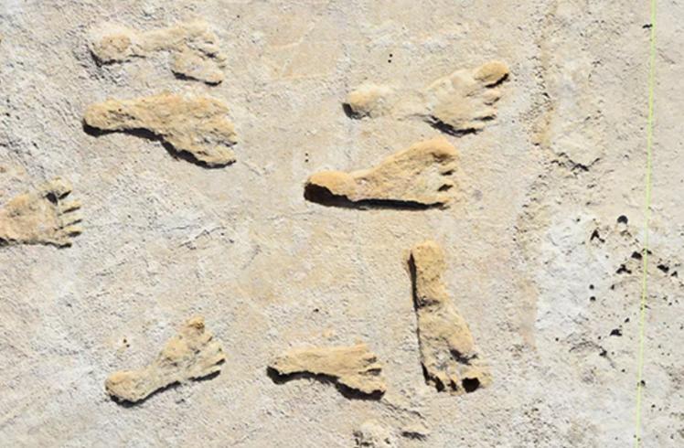美国新墨西哥州白沙国家公园发现的化石脚印证明早期人类在23000年前抵达北美