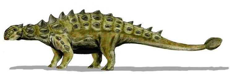 """摩洛哥发现的怪异恐龙新物种拥有不同于其他物种的""""盔甲"""""""